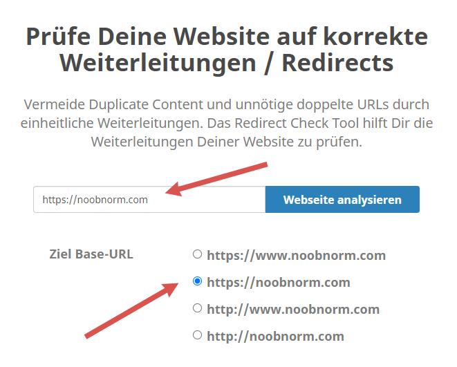 Seobility Redirect Check